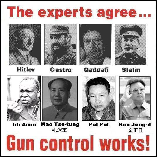 Gun Control Works So Say Experts